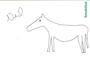 Team horses_Neil